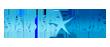 starfishLogo_110 Starfish